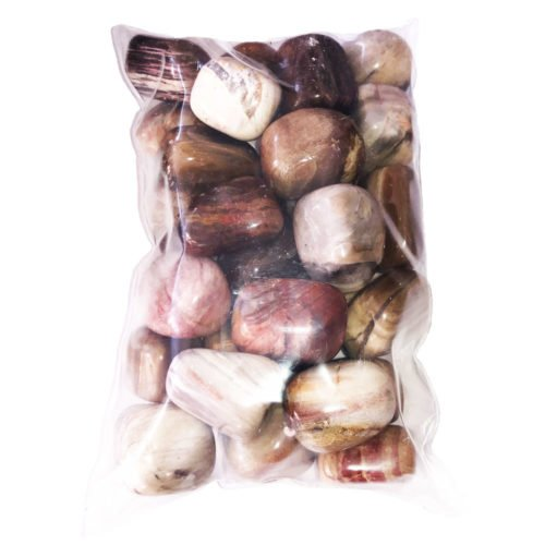 Bolsa piedras madera petrificada