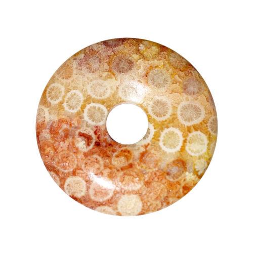 PI Chino o Donut Coral petrificado